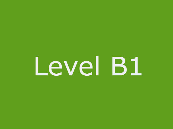 level_B1