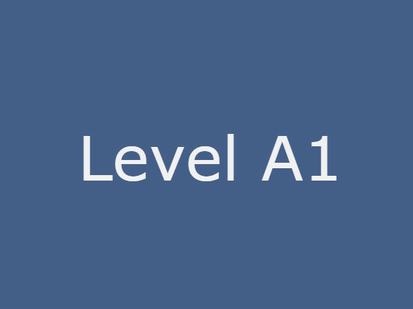 level_a1